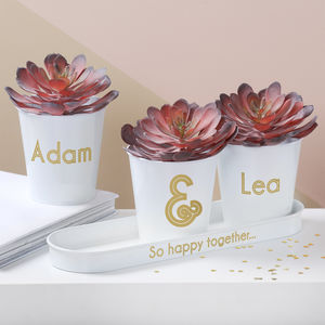 Personalised Wedding Buckets With Succulents - what's new