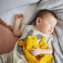 Organic Cotton Baby Comforter Bear