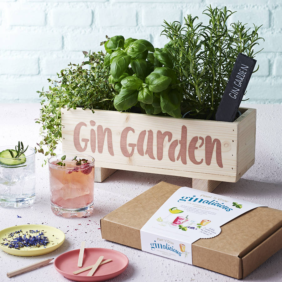gin botanical cocktail garden kit by plant and grow