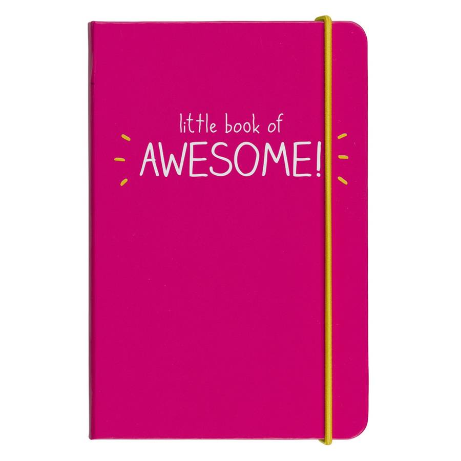 'Little Book of Awesome' Notebook