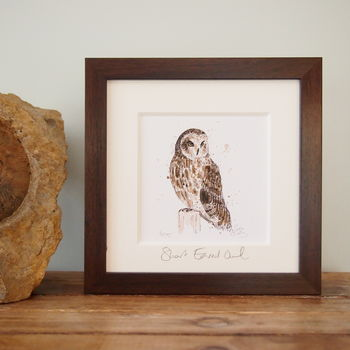 Short Eared Owl, Limited Edition Print
