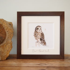 Short Eared Owl, Limited Edition Print - limited edition art
