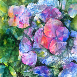 Limited Edition Blue Hydrangea Fine Art Canvas Print - canvas prints & art