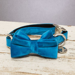 The Constantine Turquoise Velvet Dog Collar Bow Tie - dogs