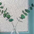 Eucalyptus Stained Glass Foliage