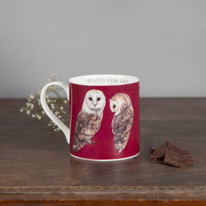 Large Bone China Barn Owl Mug