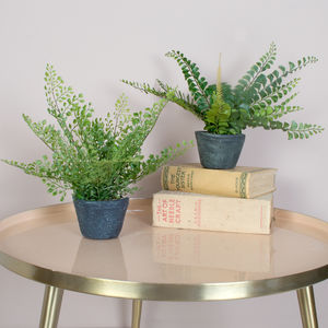 Faux Potted Ferns, Set Of Two - home accessories