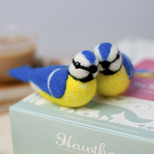 Blue Tits Needle Felting Craft Kit - creative kits & experiences
