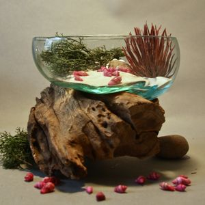 Glass And Teak Root Terrarium - flowers, plants & vases