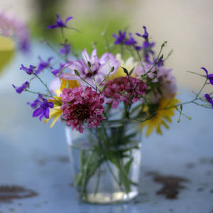 Grow Your Own Jam Jar Flowers Seed Kit - gifts for her