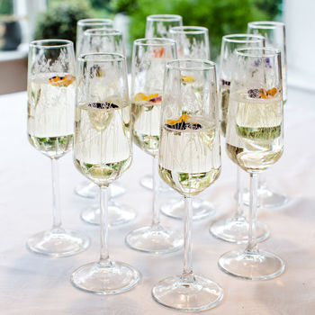 Floral Glass Flute Set Of Six