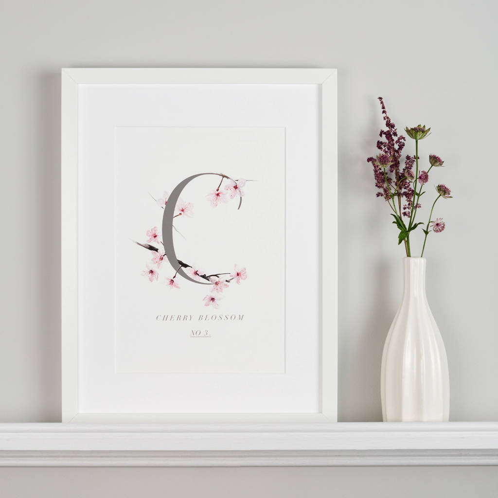 Botanical Cherry Blossom Illustration Giclee Art Print