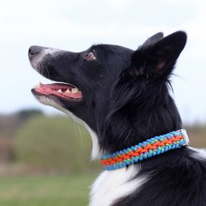Personalised Waterfall Weave Paracord Dog Collar