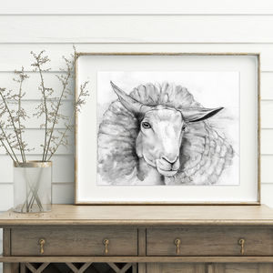 Curious Sheep Illustration Print