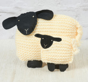Woolly Sheep 'Learn To Knit' Kit