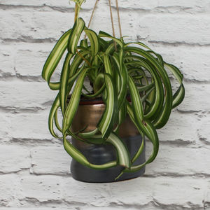 Hanging Copper And Black Stoneware Vase
