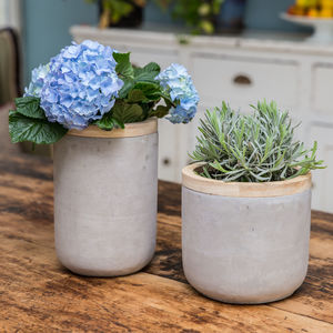 Concrete And Wood Planter Plant Pot - for sisters
