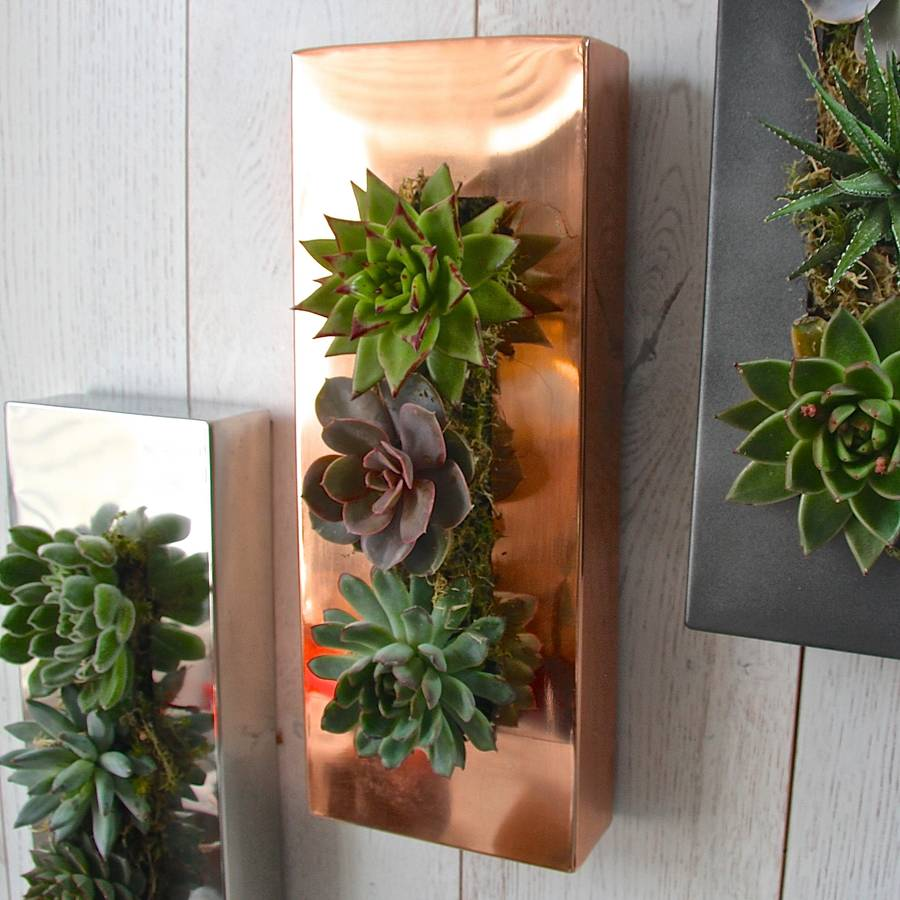 Picture Frame Garden Wall Planter