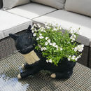 Black And White Cat Planter