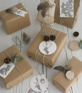 Woodland Wrap Pack - ribbon & wrap