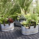 Set Of Three Oval Zinc Planters With Handles