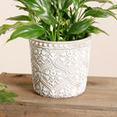 Set Of Three Floral Patterned Cement Grey Pots