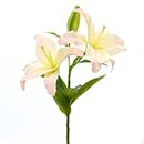 Imitation Pale Pink Casablanca Lily Stem