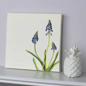 ' Grape Hyacinth ' Botanical Canvas Print - canvas prints & art