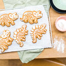 Children's Dinosaur Bake And Craft Kit