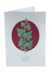 Silver Christmas Card Ivy Twine Tied Pack Of Six - cards & wrap