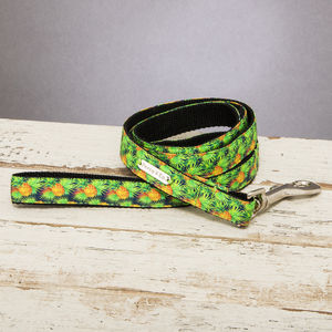 The Alderley Green Pineapple Dog Lead - dog leads & harnesses