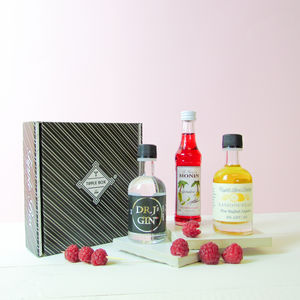 Classic Gin Clover Club Cocktail Set