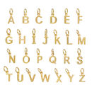 Holly Blake Initial Letter Chart in Gold