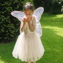 Peach And Gold Fairy Costume