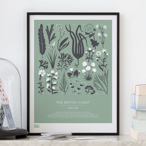 'British Coast' Plant Life Screen Print - nature & landscape