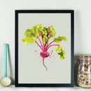 Broad Beans Vegetable Kitchen Print