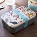 Debonair Dogs Eco Friendly Bamboo Lunch Box