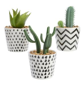 Set Of Three Faux Potted Succulents