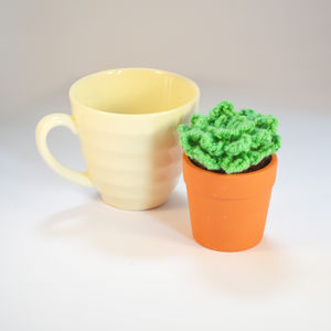 Crocheted Amigurumi Cactus Suculent Small Pot - flowers, plants & vases