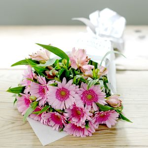 Cut Flower Pink Gerbera Bloom Bunch - fresh & alternative flowers