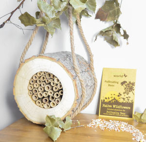 Natural Wood Bee Log And Wildflower Seed Set - gifts for mothers