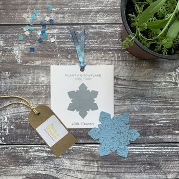 'Plant A Snowflake' Plantable Seed Paper Gift