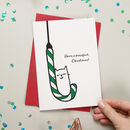 A Purrfect Christmas Card Single And Packs Available