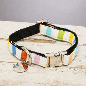 The Thurlestone Pastel Striped Dog Collar - pets