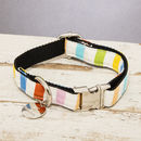 The Thurlestone Pastel Striped Dog Collar