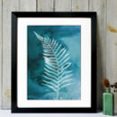 Fern No.One Limited Edition Fine Art Print