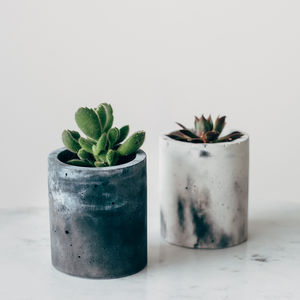 Concrete Marble Effect Cylinder Pot In Peach Or Grey - off to university
