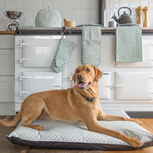 Sage Polka Dot Mattress Dog Bed