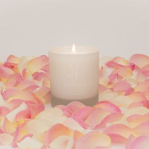 Orangery Candle - candles & home fragrance