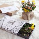 Special Edition Cover Botanical Flower Box